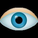 1495829960_Eye